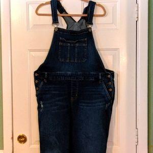 Torrid denim overalls 22 distressed look comfy